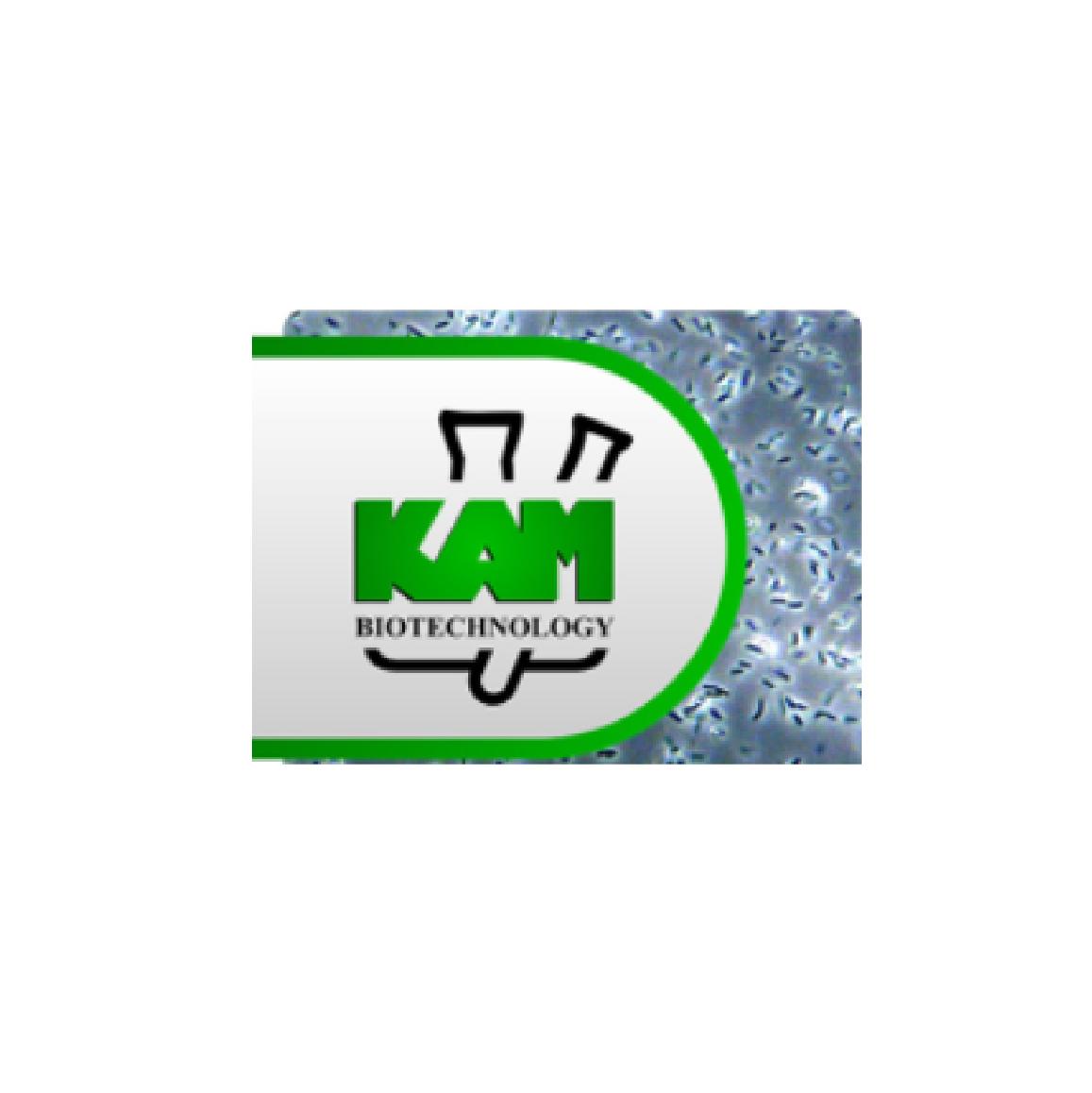 Kam Biothecnology
